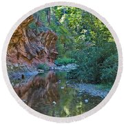Round Beach Towel featuring the photograph Tree Reflection by Mae Wertz