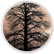 Tree Silhouette Round Beach Towel by Laurel Powell