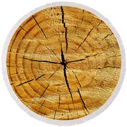 Round Beach Towel featuring the photograph Tree Trunk by Fabrizio Troiani