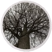 Tree Web Round Beach Towel