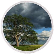 Tree With Storm Clouds Round Beach Towel