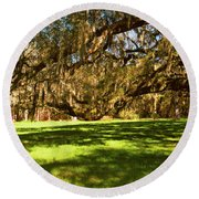 Trees Covered With Spanish Moss Round Beach Towel