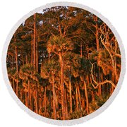 Trees, Hunting Island State Park Round Beach Towel