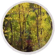 Trees In A Forest, Loop Falls, June Round Beach Towel
