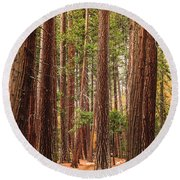 Trees Of Yosemite Round Beach Towel by Muhie Kanawati