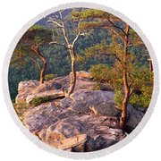 Trees On A Mountain, Buzzards Roost Round Beach Towel by Panoramic Images