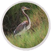 Round Beach Towel featuring the photograph Tri-color Heron by Leticia Latocki