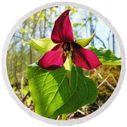 Round Beach Towel featuring the photograph Trillium Wild Flower by Sherman Perry