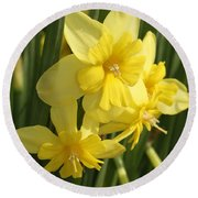 Tripartite Daffodil Round Beach Towel
