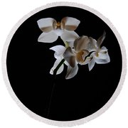 Round Beach Towel featuring the photograph Triplets II Color by Ron White