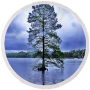 The Healing Tree - Trap Pond State Park Delaware Round Beach Towel