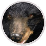 Trixie Moon Bear - In Support Of Animals Asia Round Beach Towel