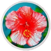 Tropical Burst Redux Round Beach Towel