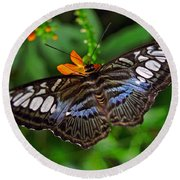 Round Beach Towel featuring the photograph Tropical Butterfly by Marie Hicks