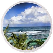 Round Beach Towel featuring the photograph Tropical Dreams by Daniel Sheldon