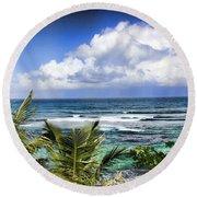 Tropical Dreams Round Beach Towel by Daniel Sheldon