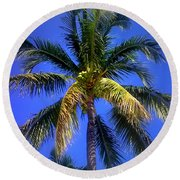 Tropical Palm Trees 8 Round Beach Towel
