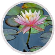 Tropical Pink Lily Round Beach Towel by Cynthia Guinn