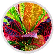 Tropicals Gone Wild Naturally Round Beach Towel