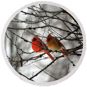 Round Beach Towel featuring the photograph True Love Cardinal by Peggy Franz