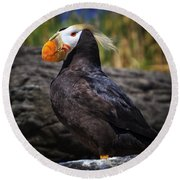Tufted Puffin Round Beach Towel by Mark Kiver