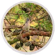 Tufted Titmouse Round Beach Towel by Deena Stoddard