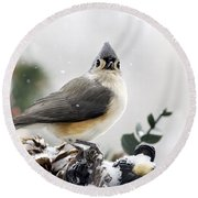Tufted Titmouse In The Snow Round Beach Towel by Christina Rollo