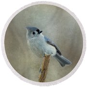 Tufted Titmouse Watching Round Beach Towel by Sandy Keeton
