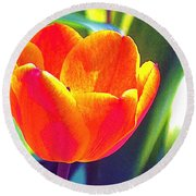 Round Beach Towel featuring the photograph Tulip 2 by Pamela Cooper