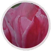 Tulip Blooming Round Beach Towel by Claudia Goodell