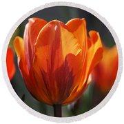 Tulip Prinses Irene Round Beach Towel