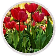Tulip Time Round Beach Towel by Peggy Hughes