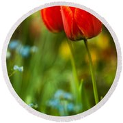 Tulips In Garden Round Beach Towel by Davorin Mance