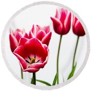 Tulips Say Hello Round Beach Towel