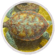 Turtle Day Round Beach Towel by Carey Chen