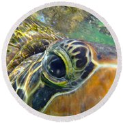 Turtle Eye Round Beach Towel by Carey Chen