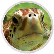 Turtle Face Round Beach Towel by Carey Chen