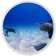 Turtle Pair Round Beach Towel