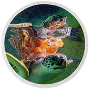 Turtle Reflection Round Beach Towel by Carey Chen