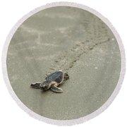 Turtle Tracks Round Beach Towel