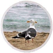 Twin Beaks Round Beach Towel by Susan Wiedmann