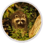 Round Beach Towel featuring the photograph Twins by James Peterson
