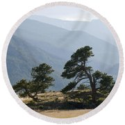 Twisted Pines Round Beach Towel