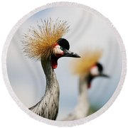 Two Black Crowned Cranes Round Beach Towel