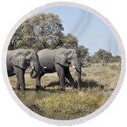 Two Bull African Elephants - Okavango Delta Round Beach Towel