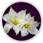 Two Clematis Flowers On Purple Round Beach Towel by Jane McIlroy