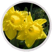 Round Beach Towel featuring the photograph Two Daffodils by Kathy Barney