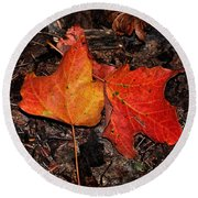 Two Fallen Autumn Leaves Round Beach Towel