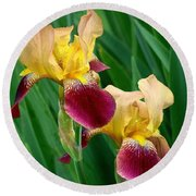 Two Iris Round Beach Towel