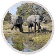 Round Beach Towel featuring the photograph Two Male Elephants Okavango Delta by Liz Leyden